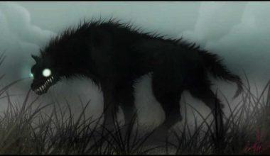 Paranormalqc: Black Shuck, ovni triangulaire, vampires et Dragon