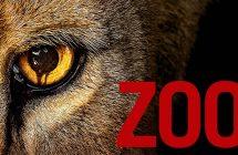 Zoo: Séries+ va diffuser la série au Québec