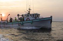 La pêche maudite: à la recherche du hareng sur Canal D