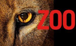 Zoo: une saison 3 pour la série à James Wolk