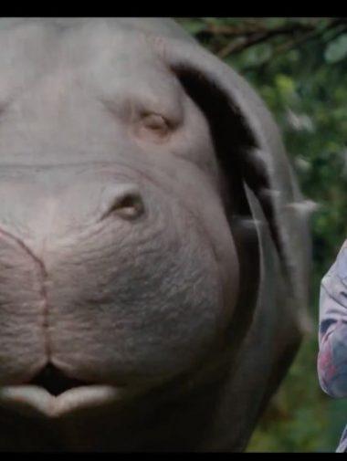 Okja: Netflix dévoile une première bande-annonce