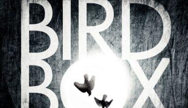 Bird Box: Sandra Bullock de retour dans un thriller Netflix