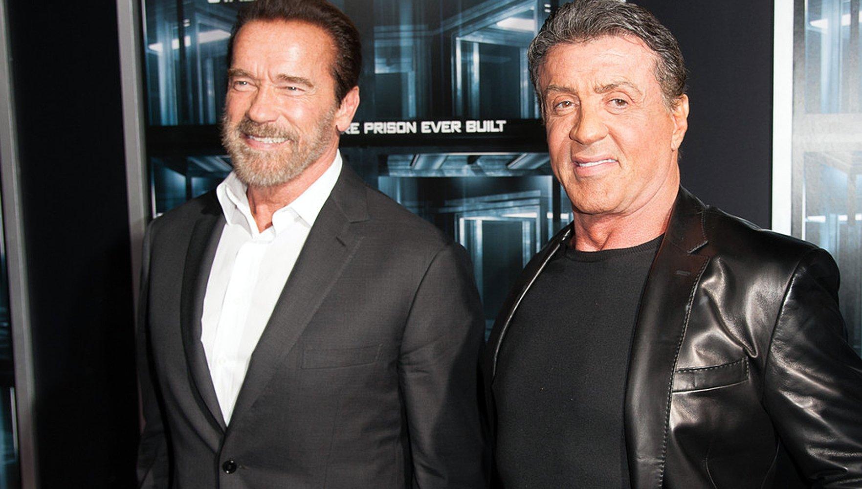 Schwarzie et Sly se sentent toujours d'attaque en dépit de leur âge, respectivement 67 ans et 68 ans!