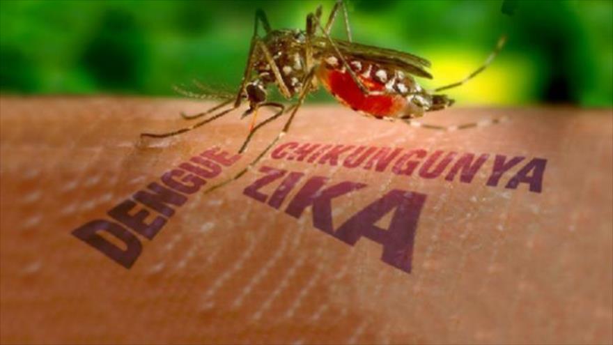 Gauchedroitistan 01/02/2016 – Zika, discrimination positive, le Yémen et réseau pédophile