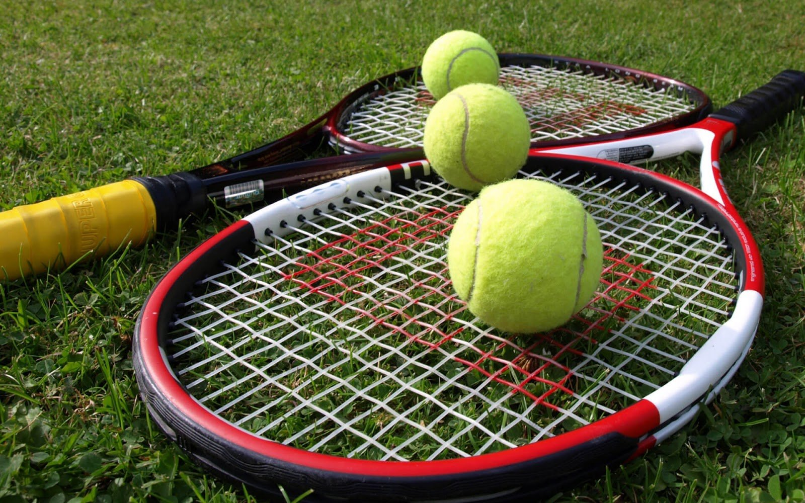 RDS2 en direct du tournoi de Wimbledon 2016