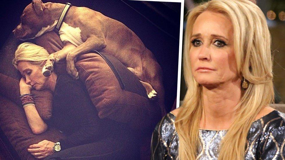 Real Housewives: le pitbull de Kim Richards attaque une amie