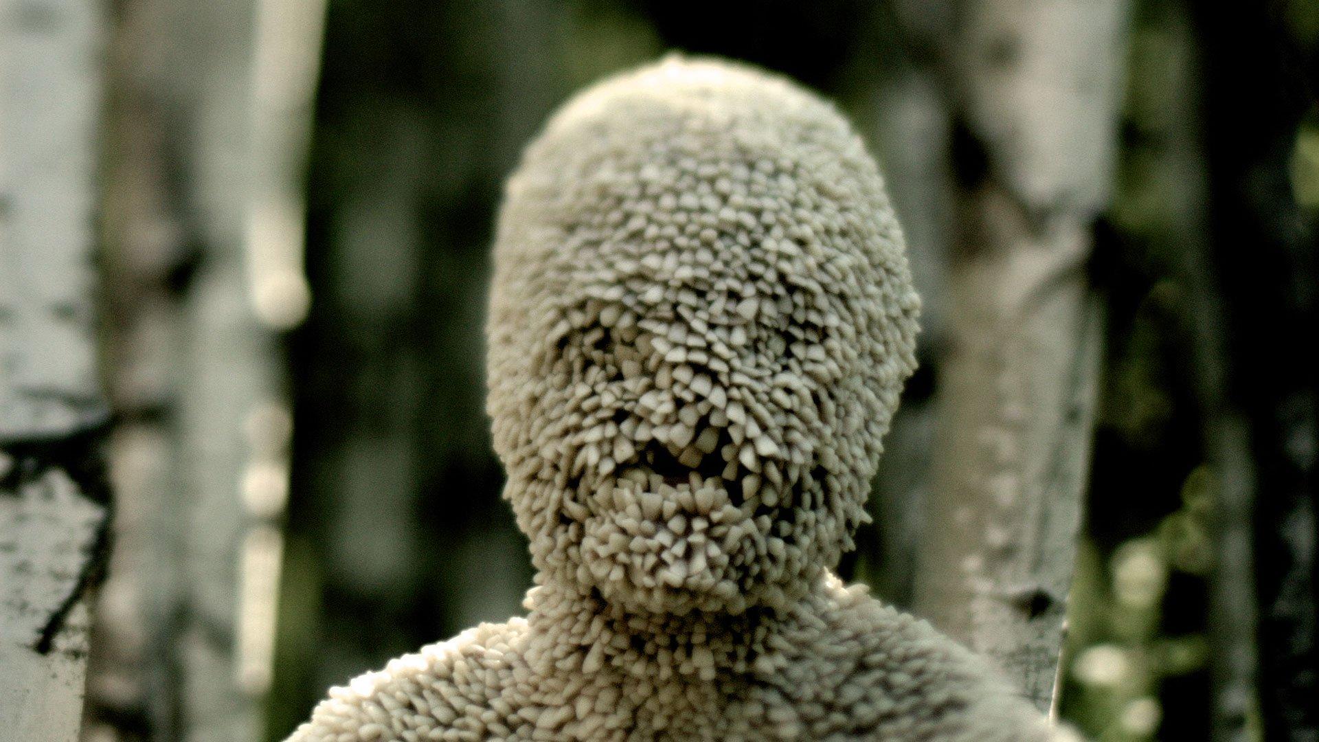 Channel Zero: une nouvelle série d'horreur sur Showcase