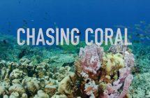 Chasing Coral: L'actrice et chanteuse Kristen Bell chante pour le documentaire