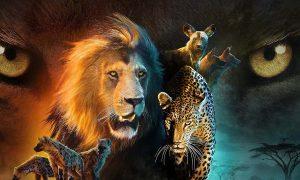Savage Kingdom: Nat Geo Wild renouvelle la série