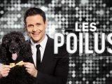 Les Poilus: un talk-show animalier animé par le Dr Sébastien Kfoury