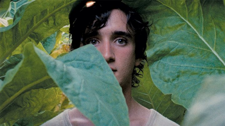 Happy as Lazzaro: Netflix fait l'acquisition du film Heureux comme Lazzaro