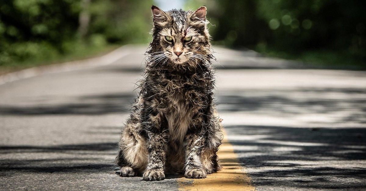 Pet Sematary: un premier trailer officiel pour Simetierre