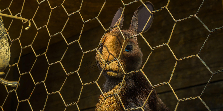 Les garennes de Watership Down: La colline aux lapins est sur Netflix