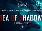 Sea of Shadows: un trailer pour le documentaire choc
