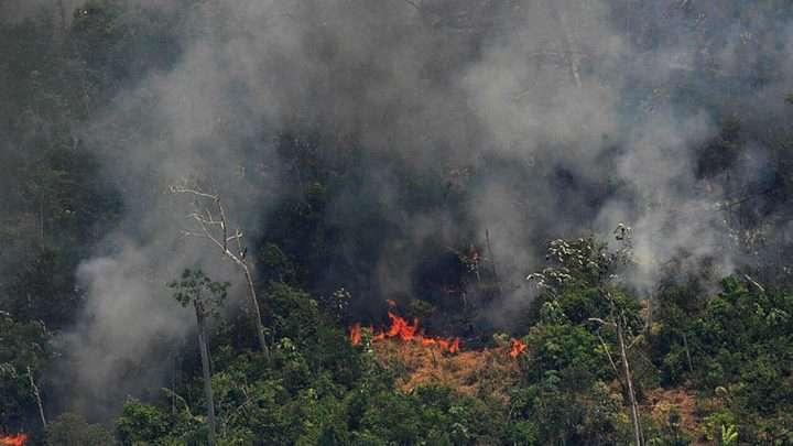 NON il n'y a pas d'incendies apocalyptiques dans la forêt amazonienne
