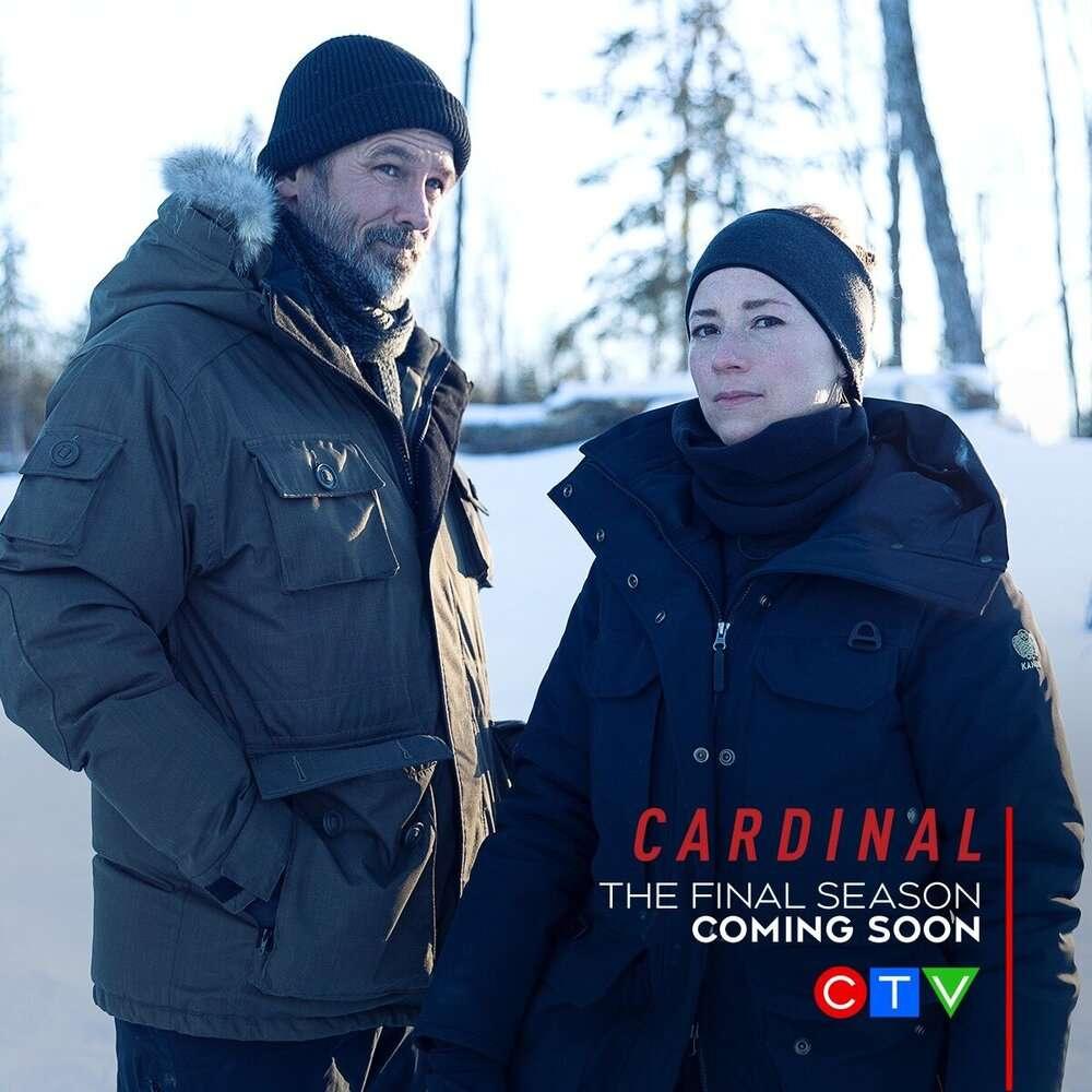 Cardinal : Avant la nuit